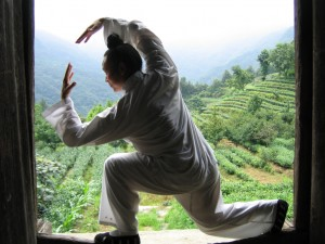 Maître Yuan Li Min