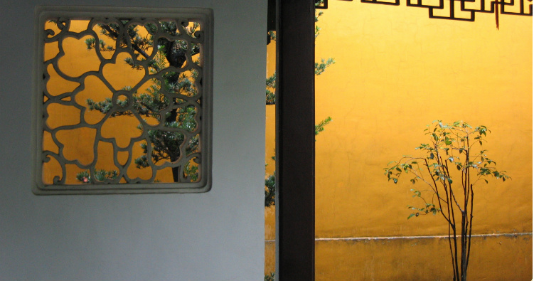 fond jaune arbres